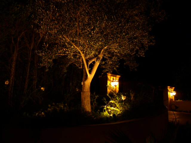 Calabasas Exterior Lighting